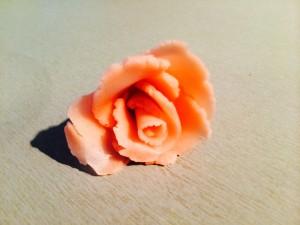 montage de la rose